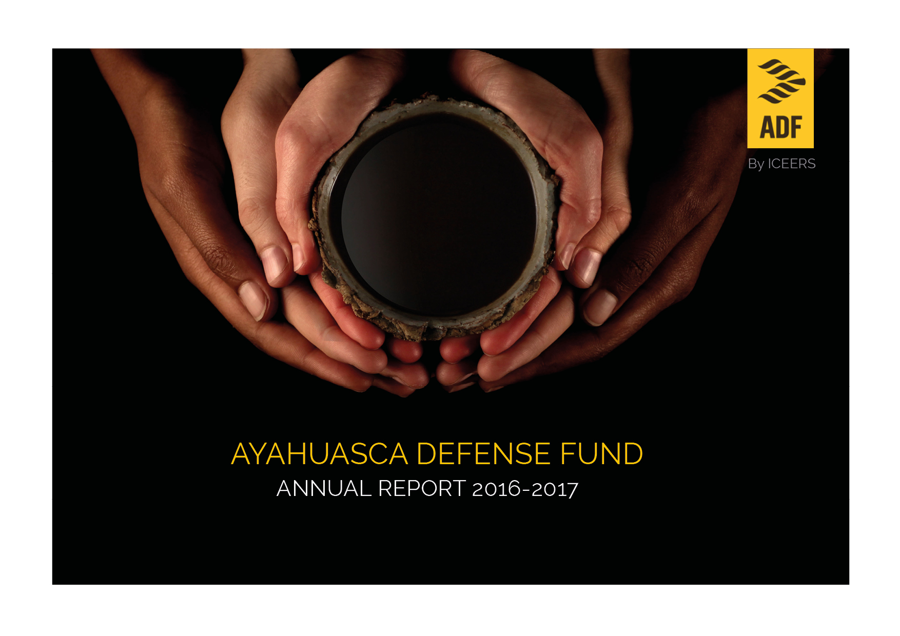 ICEERS_ADF_annual report